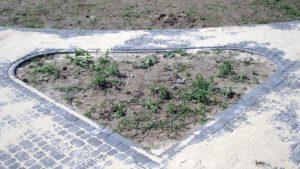 Фрагмент зеленого острівка мощення.